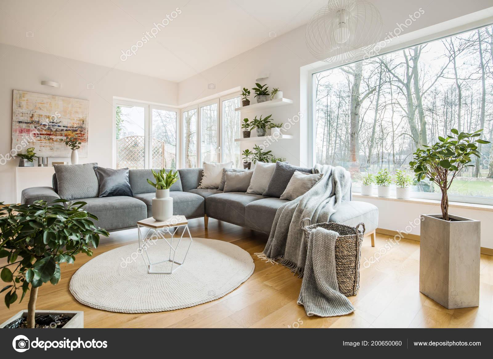 Fresh Green Plants White Living Room Interior Corner Sofa Pillows ...