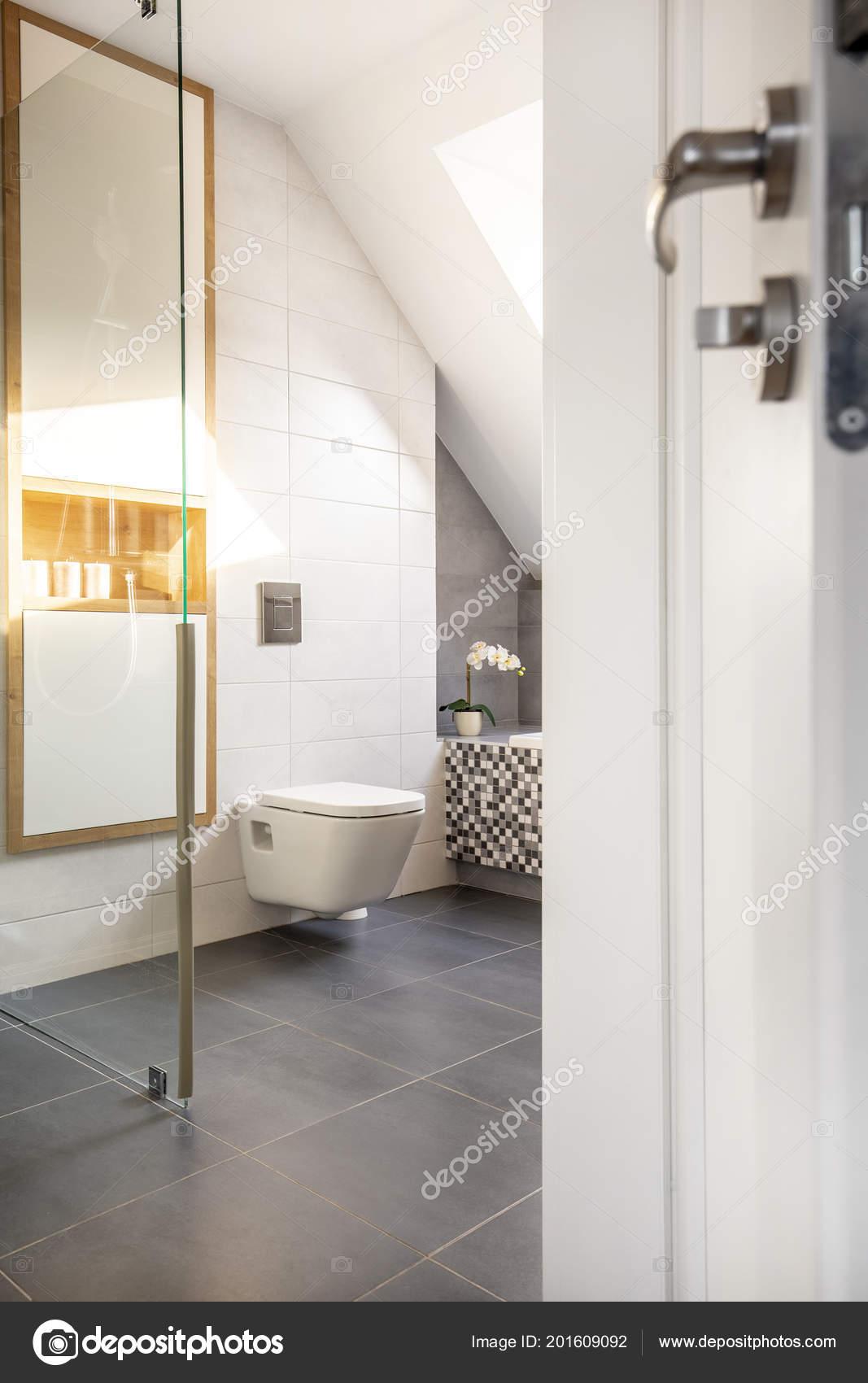 Witte Moderne Badkamer Interieur Met Toilet Kast Boven