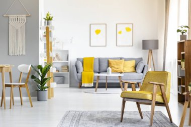 Yellow armchair on rug near plant in open space interior with posters above grey couch. Real photo with blurred background