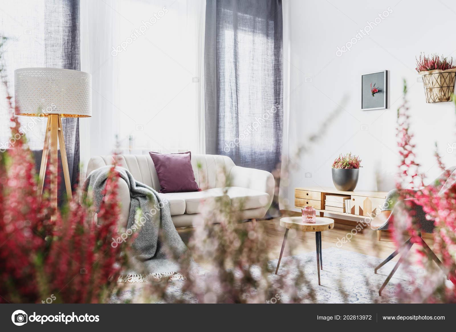 Blauen Vorhang Hinter Beige Sofa Mit Lila Kissen Wohnzimmer ...