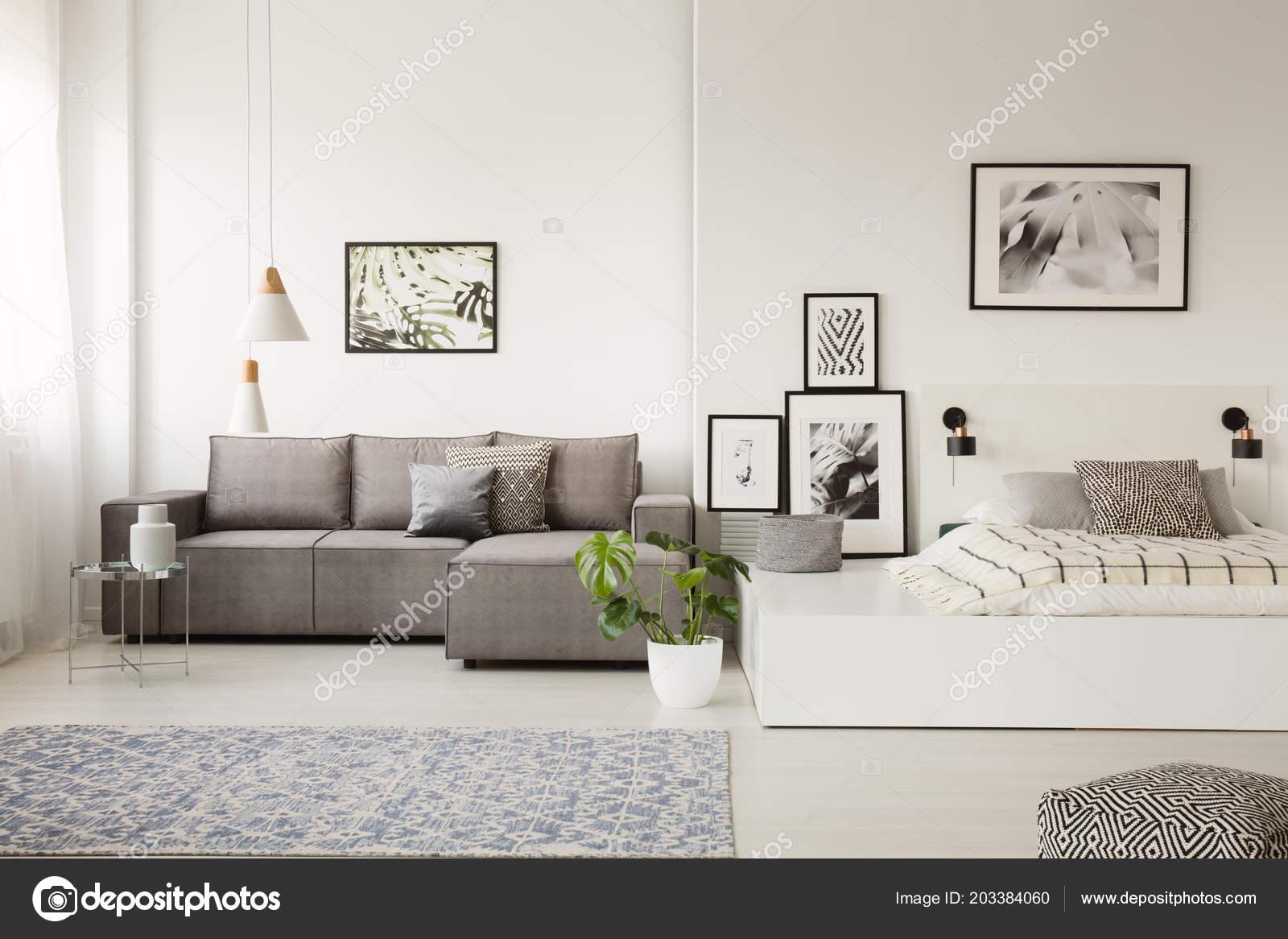 Super Gallery Posters Plant White Apartment Interior Sofa Bed Uwap Interior Chair Design Uwaporg