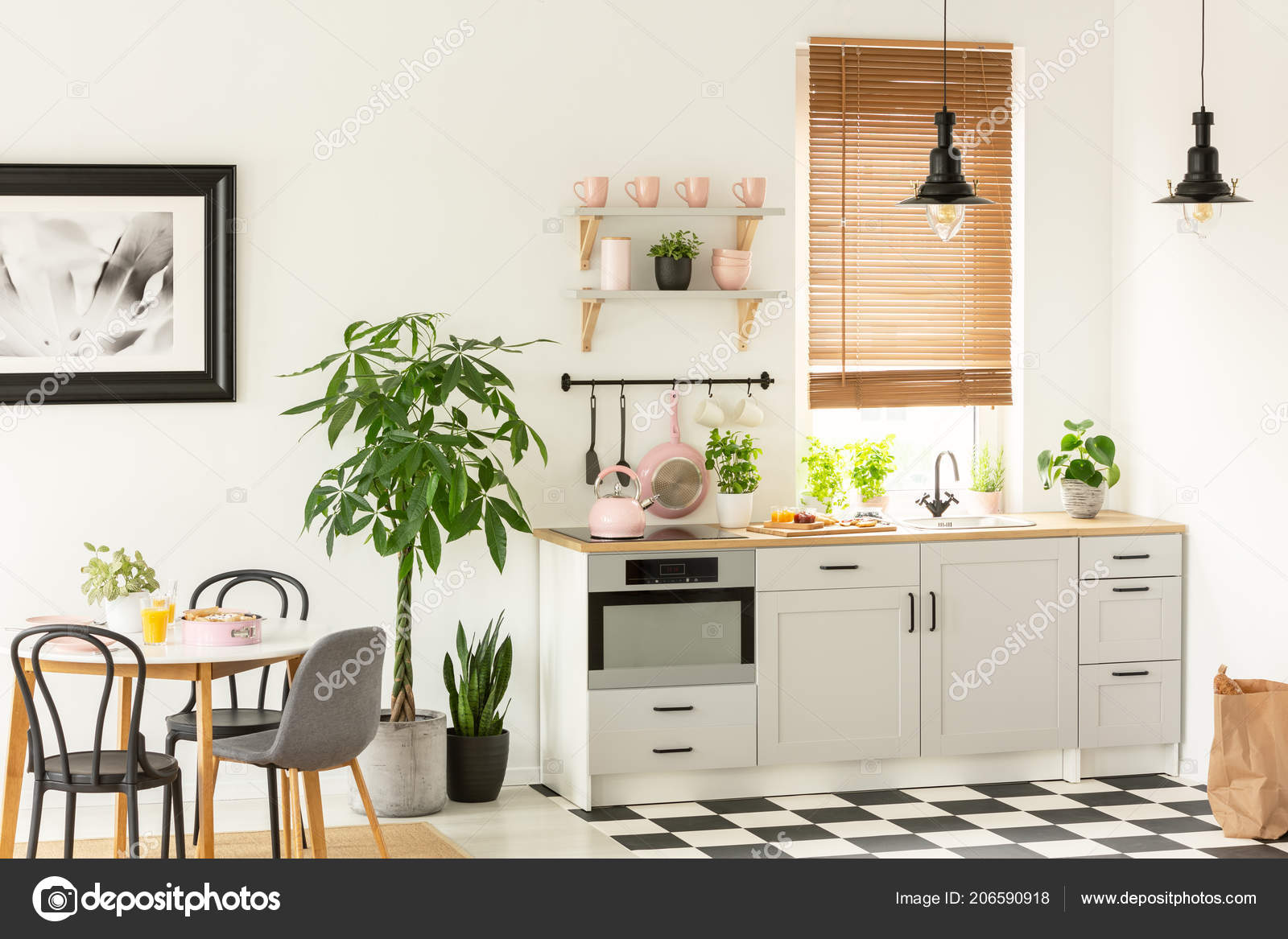 Foto Reale Interiore Moderno Della Cucina Con Armadi Piante Ripiani ...