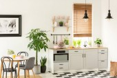 Reálné fotografie interiéru moderní kuchyně se skříňkami, rostliny, police a růžové doplňky jídelní stůl a židle