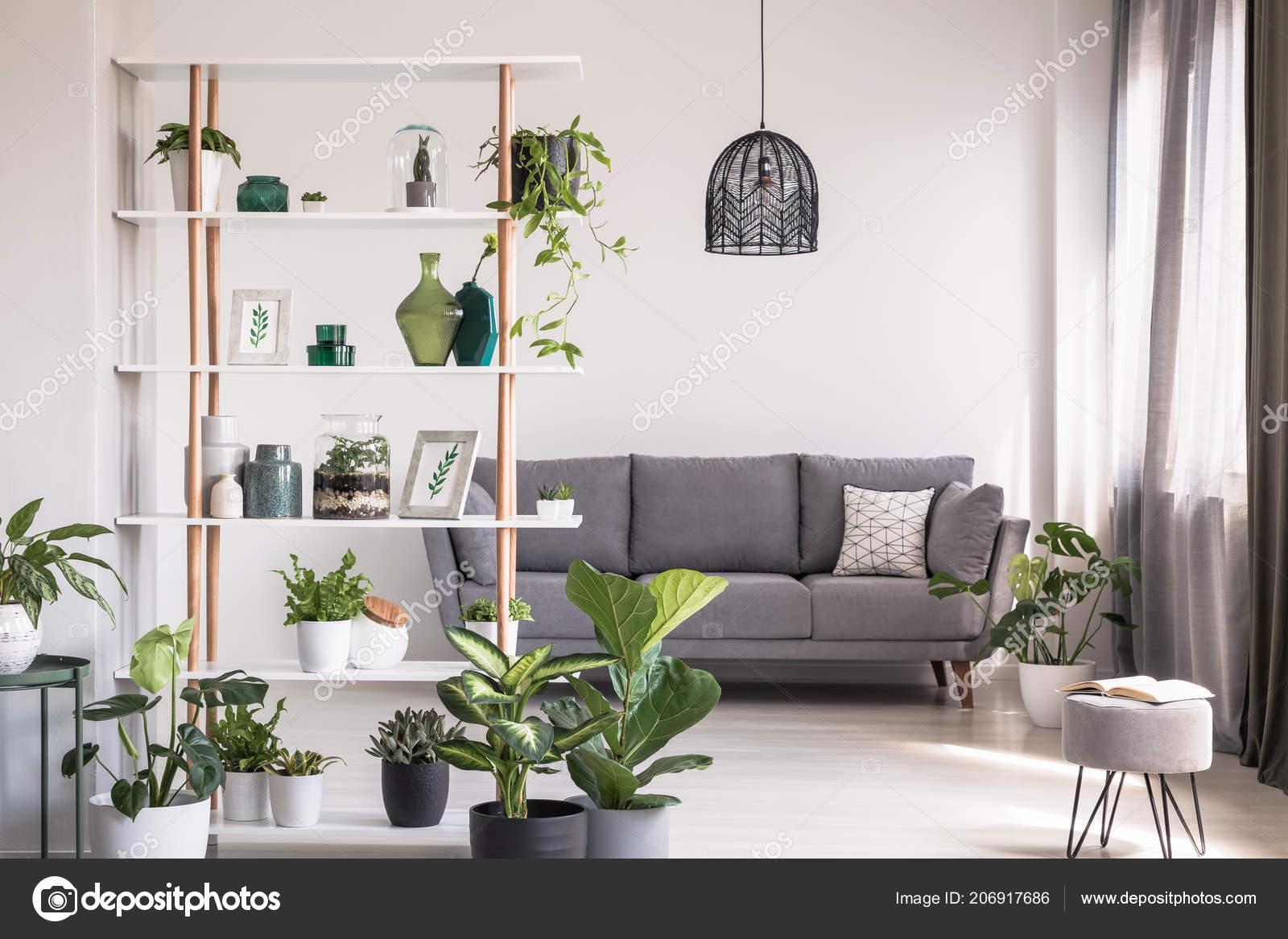Real Photo Modern Living Room Interior Shelf Decorations