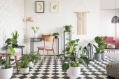 Photo Botanical living room interior with checkered floor, chair and desk, graphics and decorations on the wall. Real