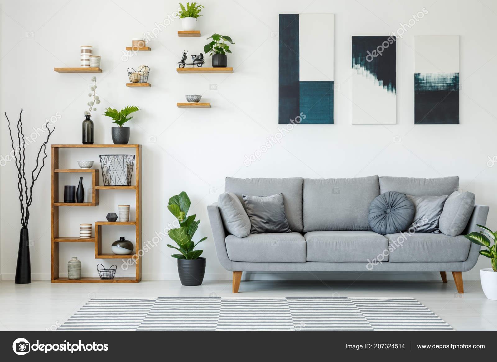 Interieur Elegant Salon Avec Canape Gris Des Etageres Bois