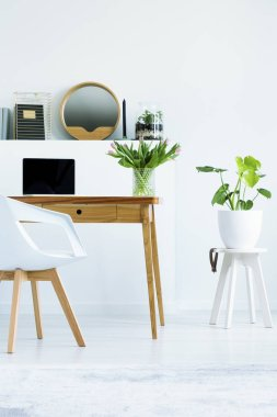 Plant on stool next to wooden desk with laptop in white home office interior with chair. Real photo