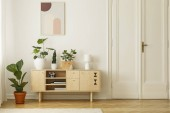 Retro styl, dřevěný příborník s zelenými rostlinami a plakát na bílé zdi v interiéru jednoduché byt s rybí dubovou podlahu. Reálné Foto.