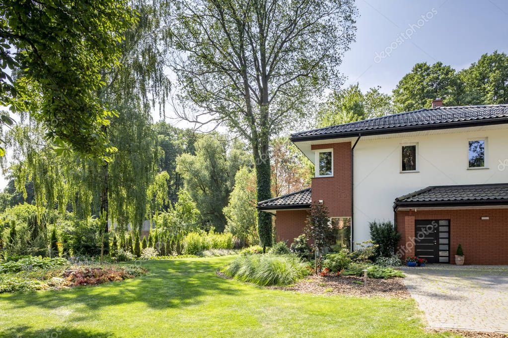 Natural view of trees and garden of modern house with windows and door