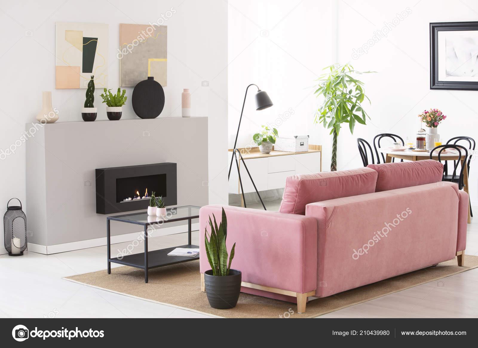 Canapé Velours Rose Permanent Vraie Photo Intérieur Salon Style ...