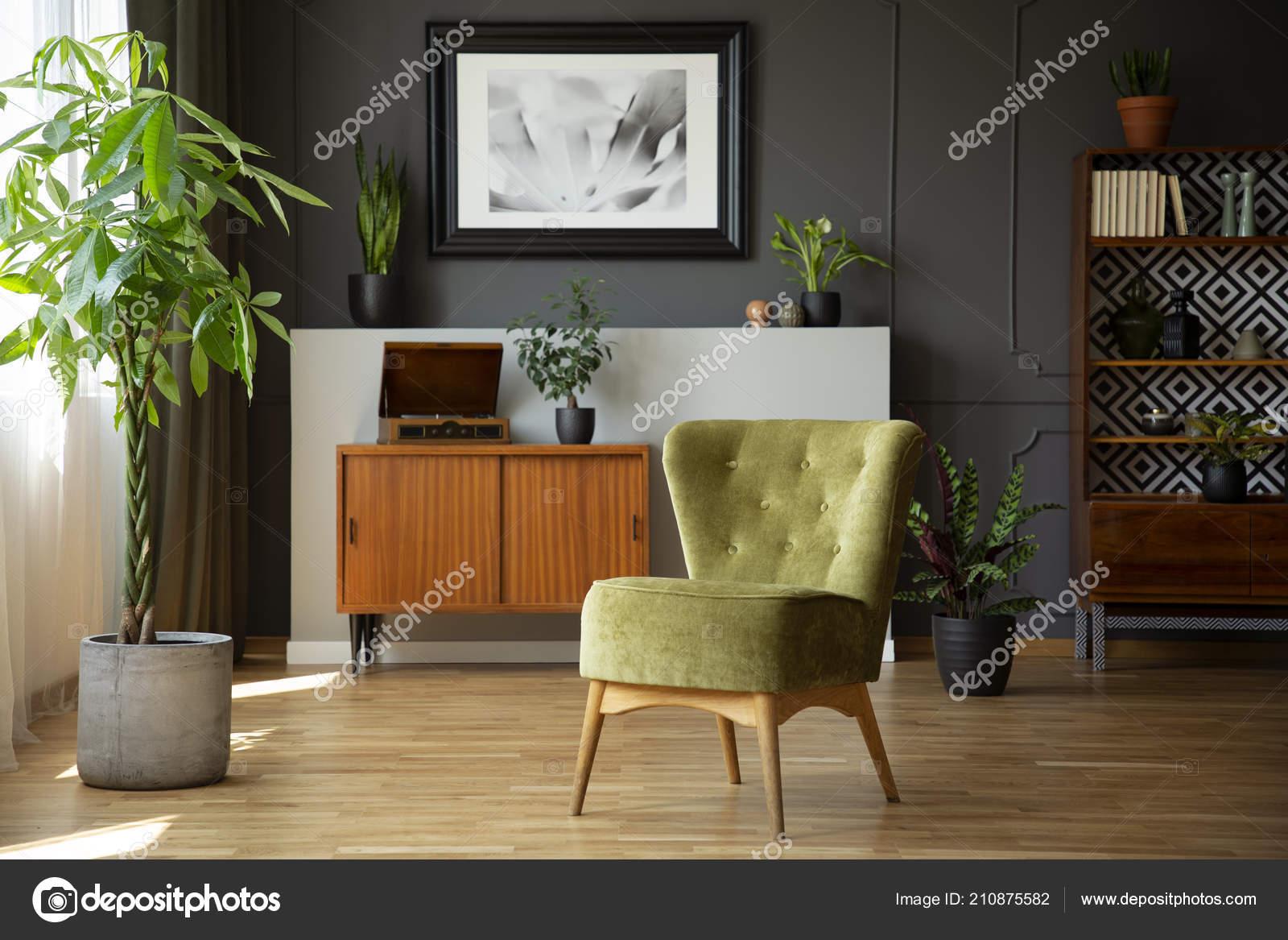 Groene Stoel Planten Grijs Woonkamer Interieur Met Poster