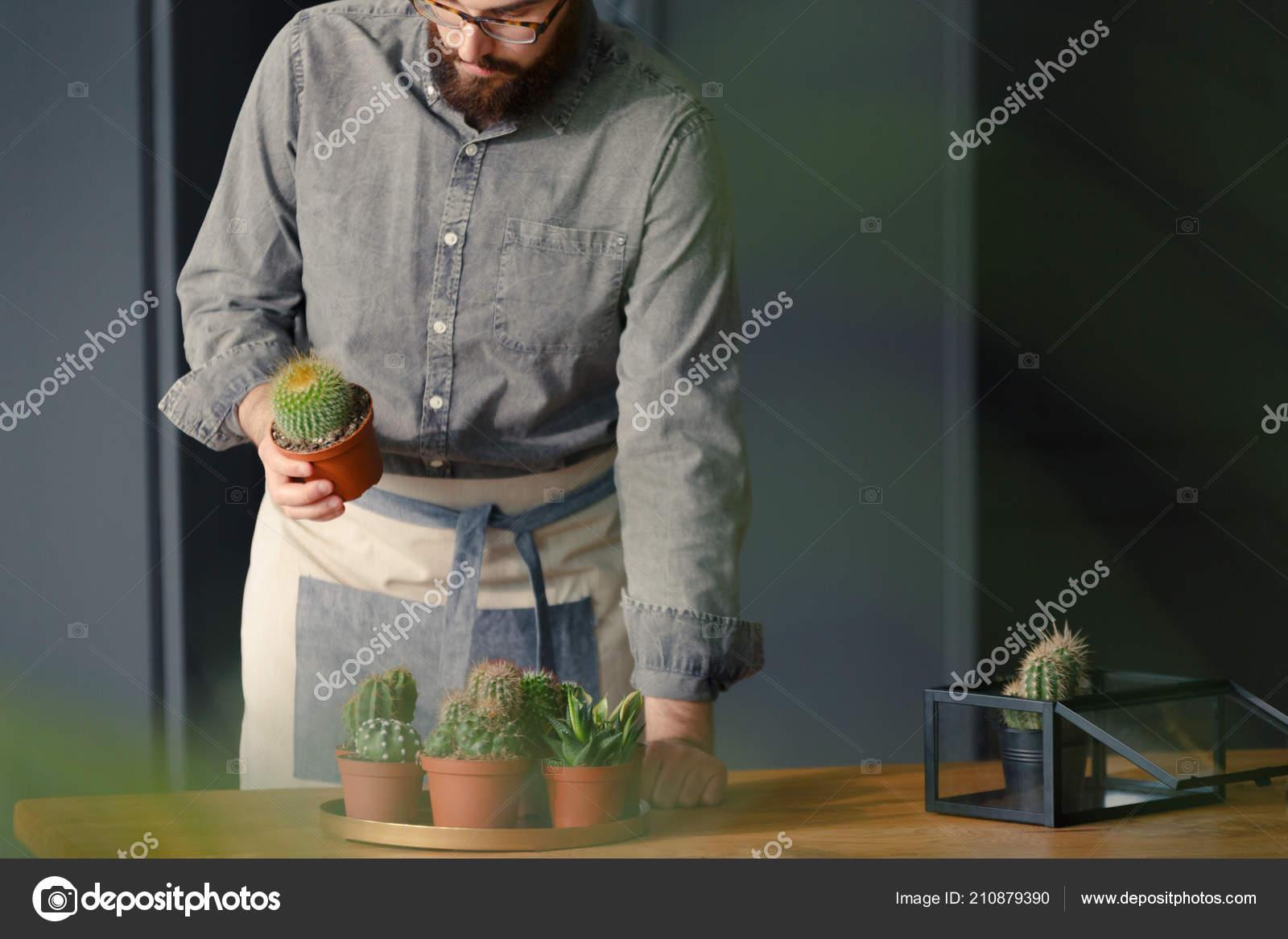 149a630545e Zahradník Šedé Tričko Pracuje Květinářství Kaktusy Dřevěný Stůl — Stock  fotografie