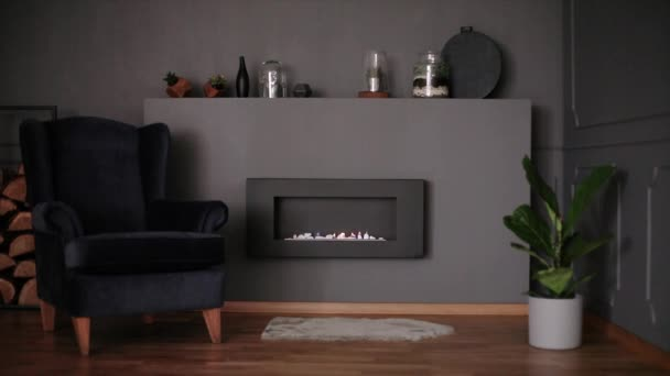 Video of dark living room interior with molding on wall, fresh plants, black armchair, eco fireplace and decor on shelf