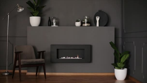 Video of dark grey living room interior with fresh plants, decor, retro armchair and eco fireplace