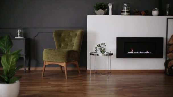 Burning eco fireplace in dark grey living room interior with green armchair, decor on shelf and fresh plants in the video