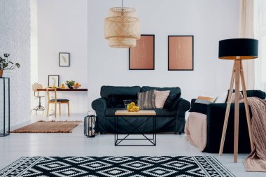 Pink posters above green sofa in bright apartment interior with patterned carpet and lamp. Real photo