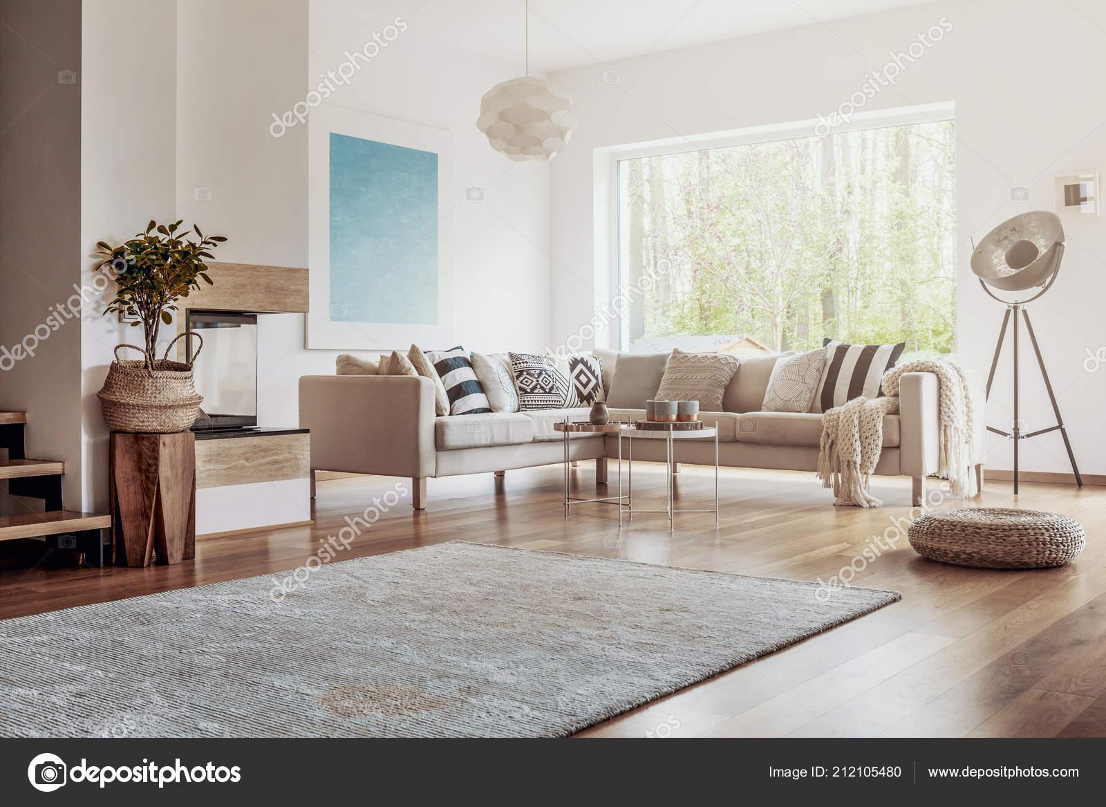 Open Space White Living Room Interior Big Rug Dark Hardwood