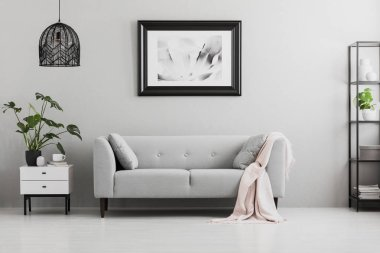Poster above grey sofa with pink blanket in living room interior with lamp and plant. Real photo