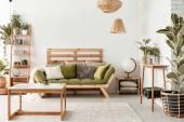 Fotografie Kissen auf grünem Sofa im natürlichen botanischen Wohnzimmer mit Holztisch und Pflanzen. echtes Foto