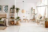 Fotografie Hängematte und Couch im Boho-Apartment-Interieur mit Postern, Pflanzen und Stühlen am Tisch. echtes Foto