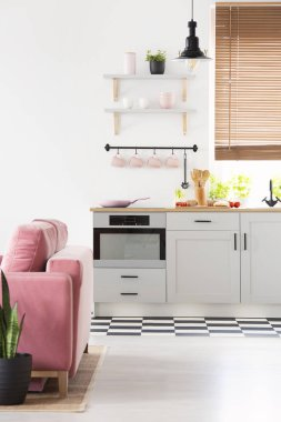 Black lamp above grey kitchenette in open space interior with pink sofa and window. Real photo