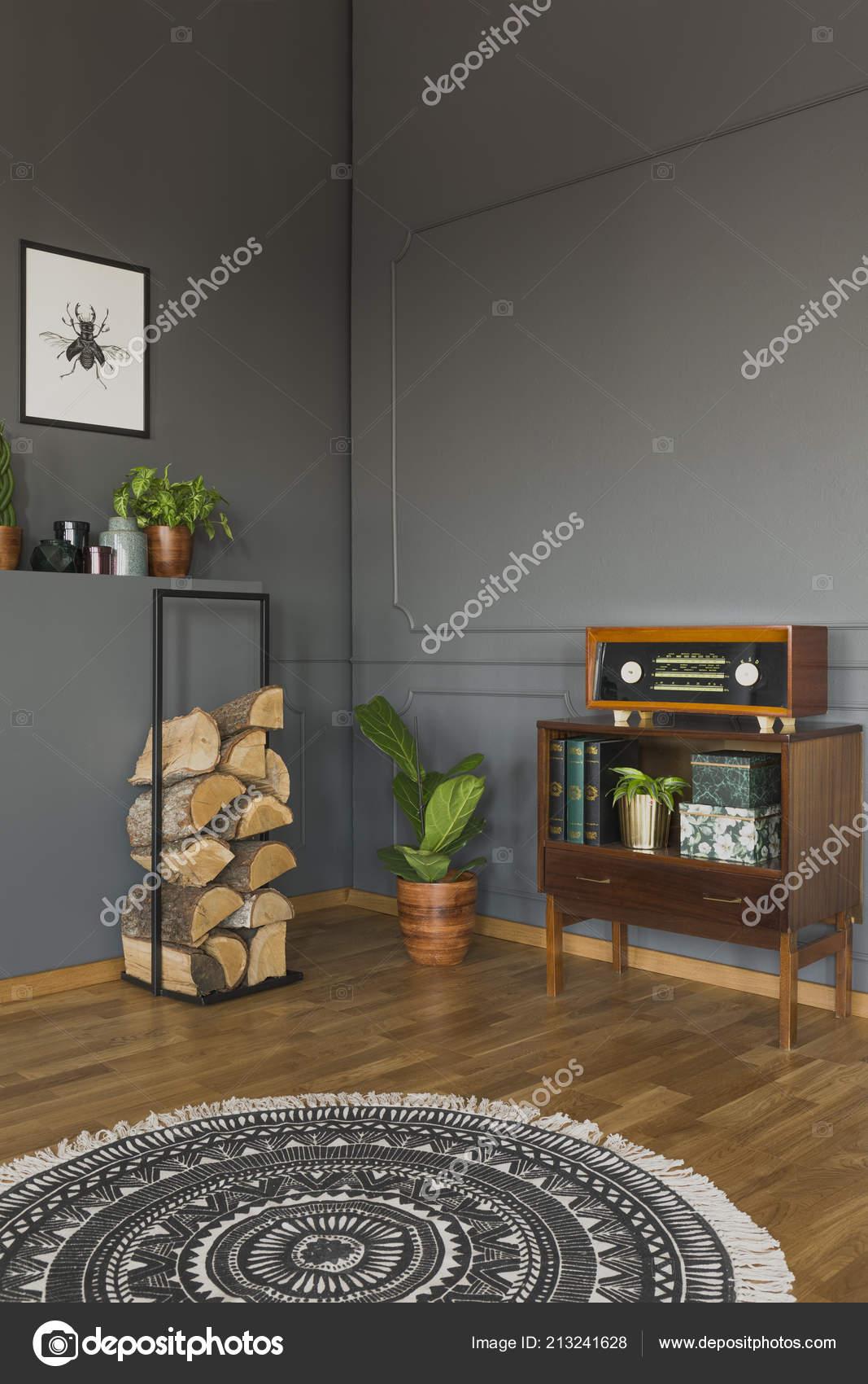 Runder Teppich Innen Grau Retro Wohnzimmer Mit Radio Schrank ...