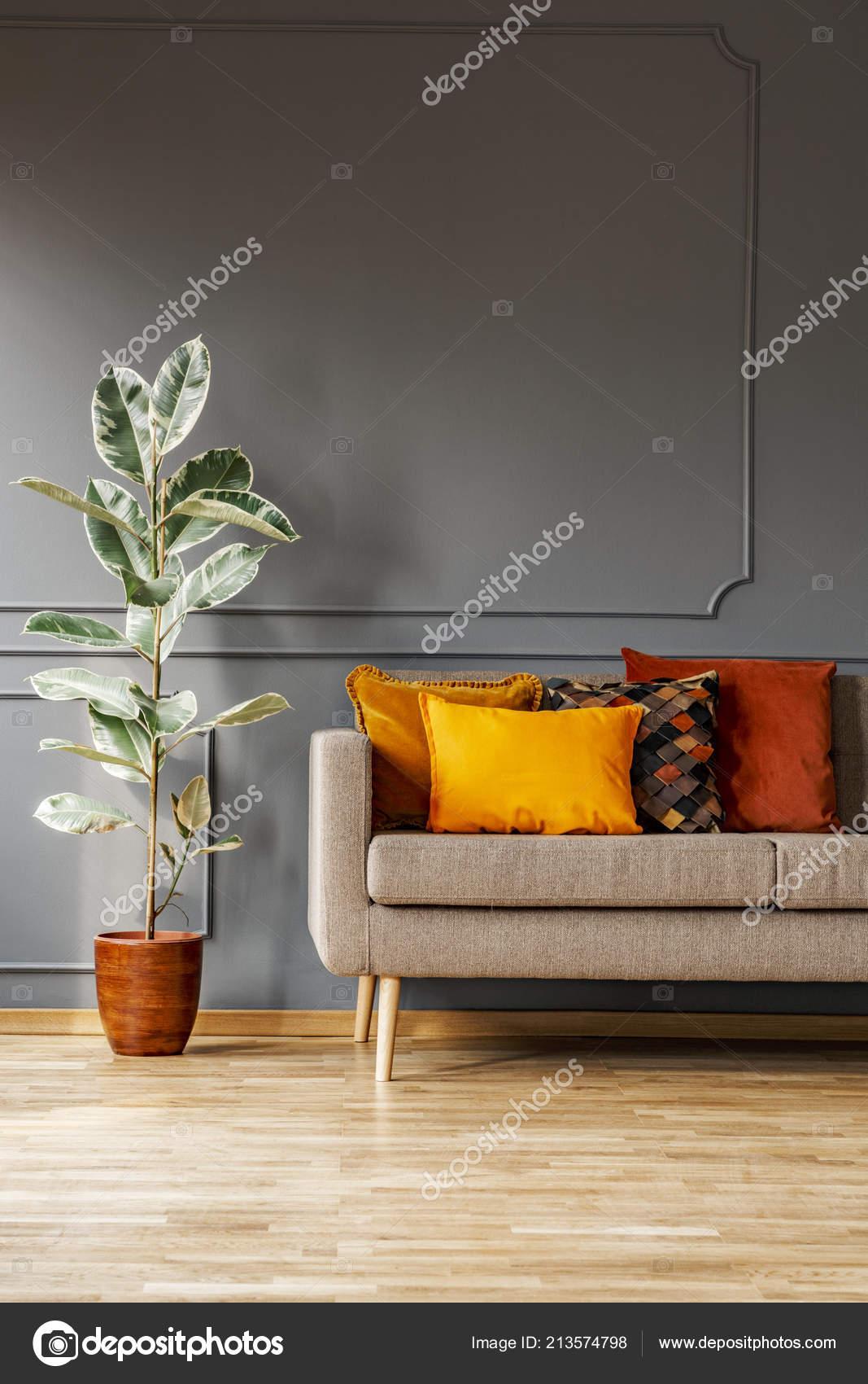 Ficus Next Brown Sofa Orange Cushions Grey Living Room Interior