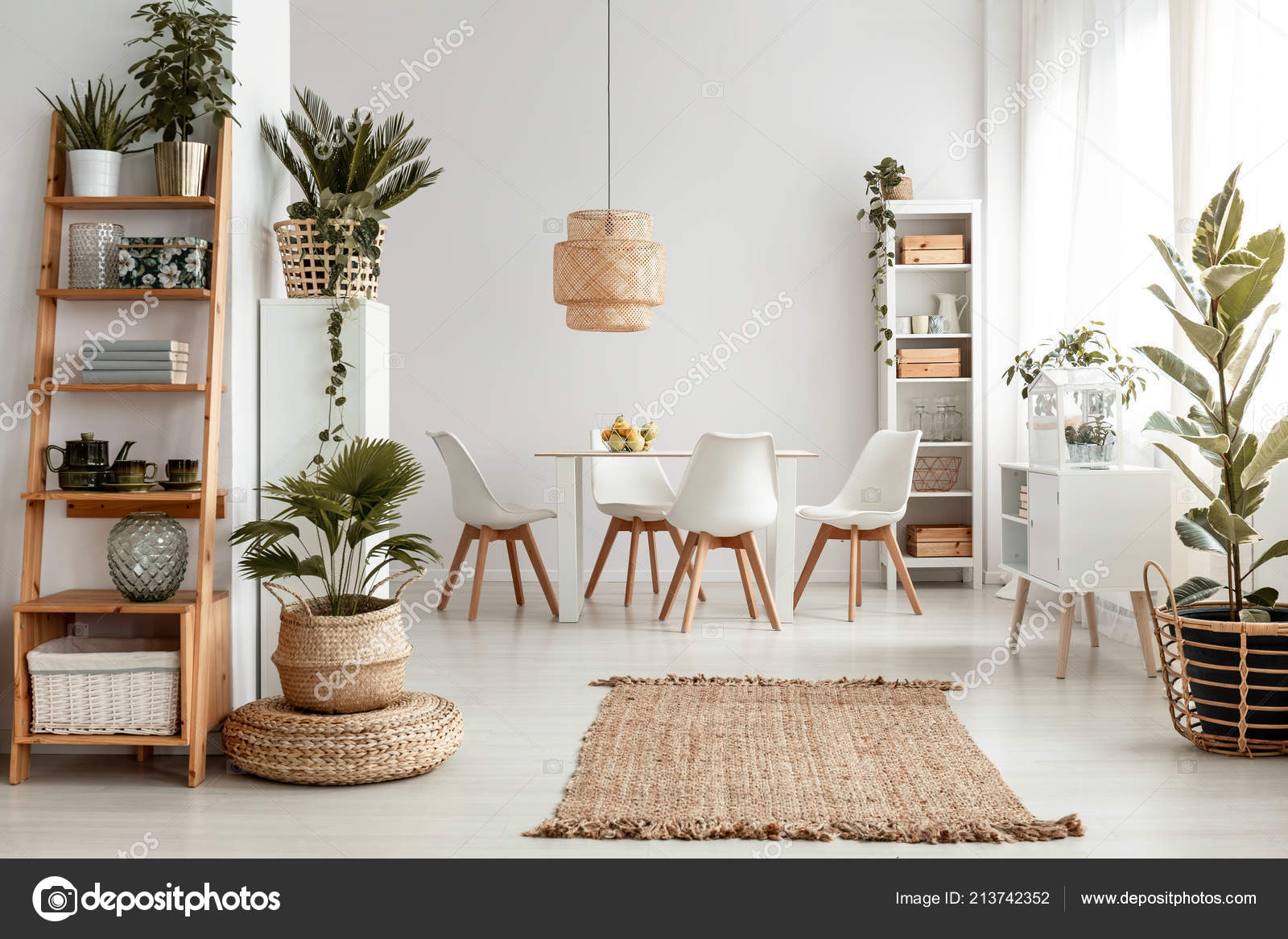 Plants Shelves Rug White Apartment Interior Chairs Dining ...