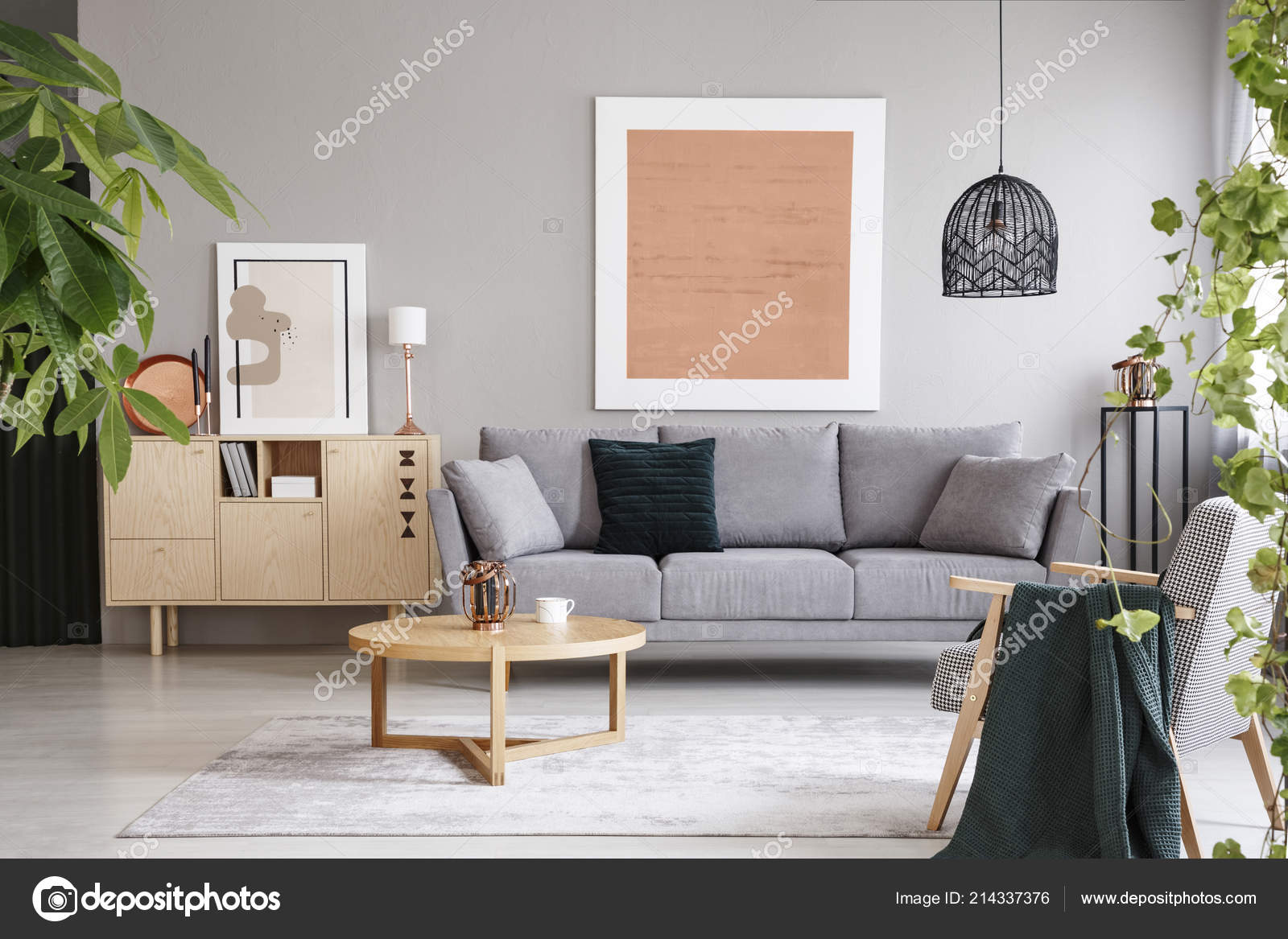 Rosa Plakat Oben Grau Sofa Wohnzimmer Interieur Mit ...