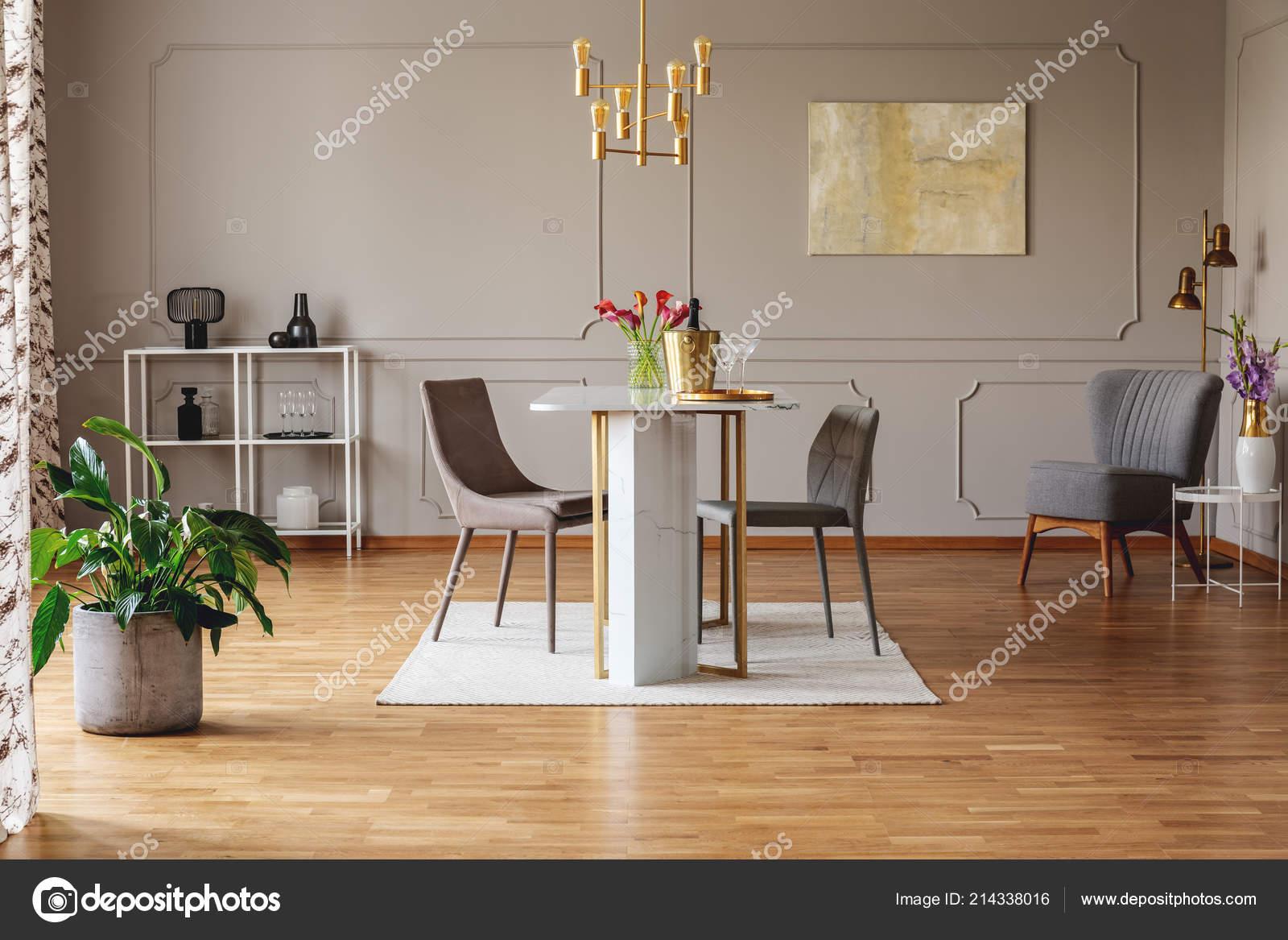 Pianta dipinto grigio aprire interno spazio con sedie tavolo