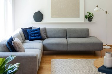 Blue pillows on grey corner sofa in apartment interior with lamp and plant next to poster. Real photo