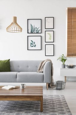 Posters on a wall in a living room interior with a sofa and low coffee table. Real photo