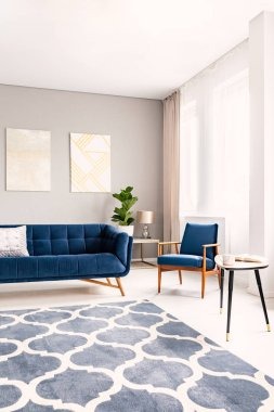 Elegant living room interior with a dark blue couch and a matching armchair. Large windows with drapes and a decorative rug. Real photo.