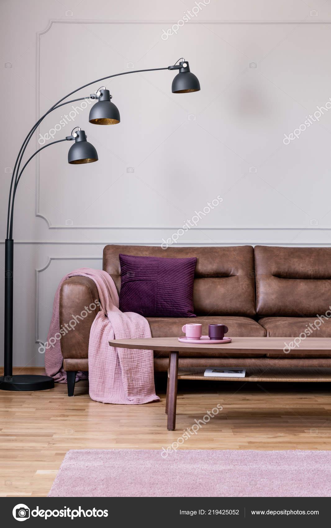 Pink Blanket White Living Room Interior