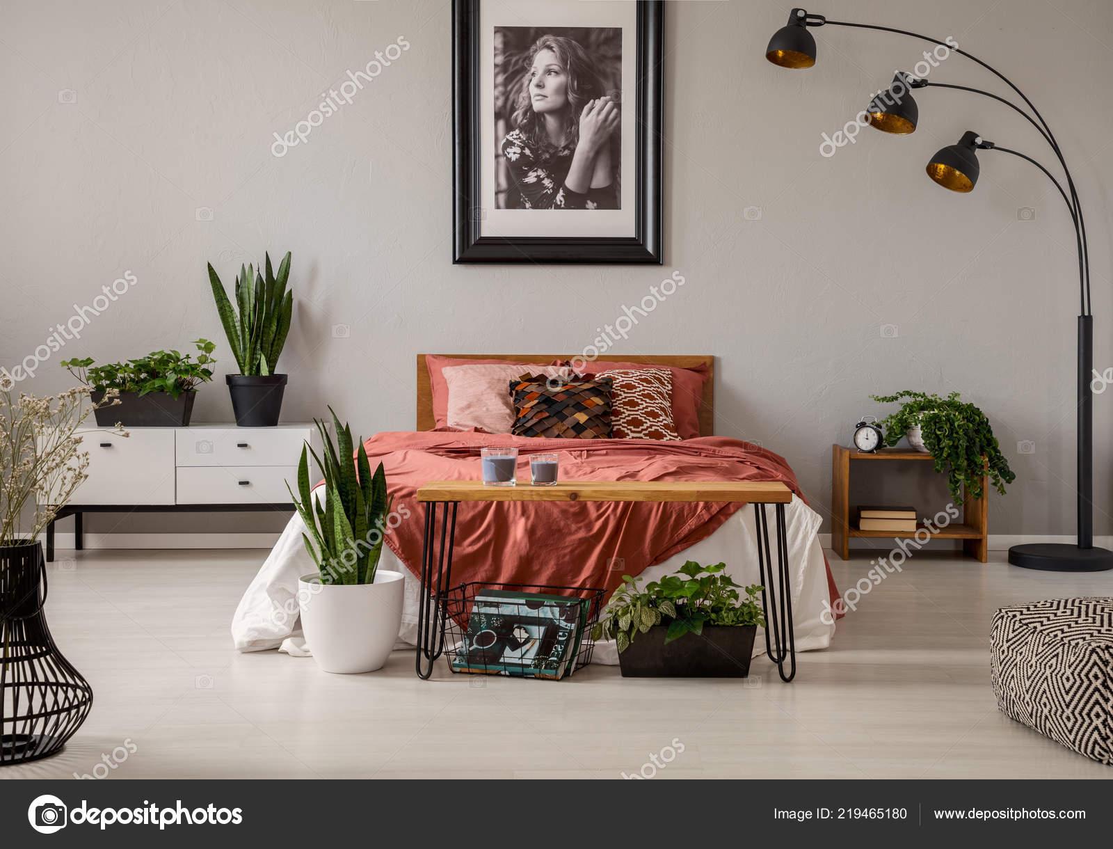 Pflanzen Und Lampe Grau Schlafzimmer Innenraum Mit Poster ...