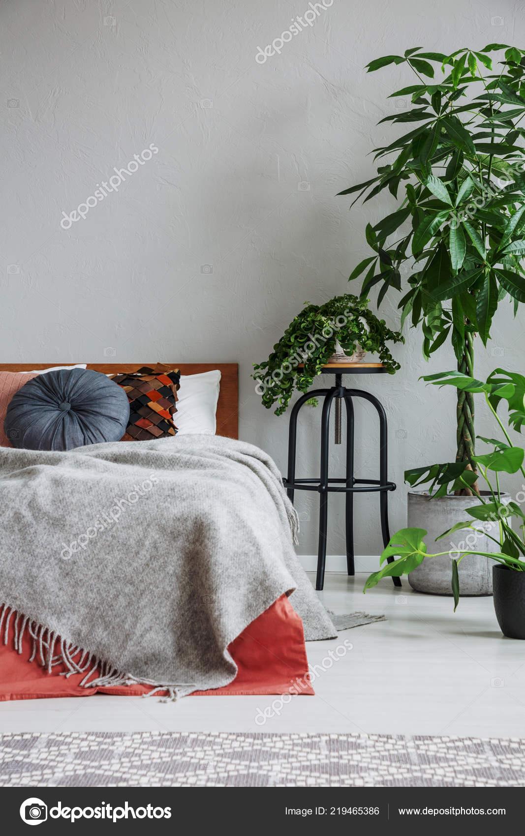 Plants next bed red grey sheets pillows natural bedroom interior stock photo