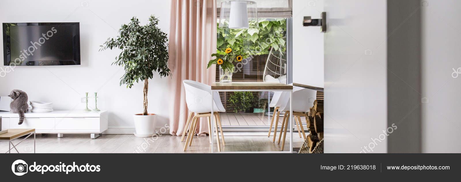Panorama Sedie Tavolo Pranzo Bianco Appartamento Interno Con Pianta ...
