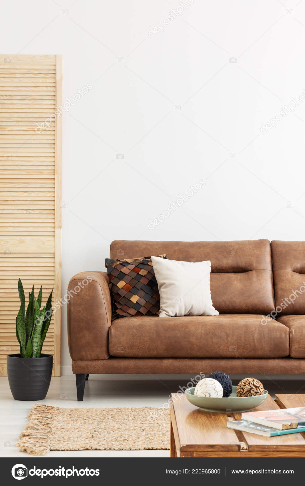 Pillows Leather Couch White Living Room Interior Plant Rug