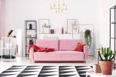Fotografie Kovové regály a abstraktní obrazy za pudr růžový gauč v obývacím pokoji elegantní bílé, reálné Foto