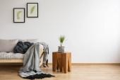 Blumenbilder in Rückenrahmen über skandinavischem Sofa mit Kissen und grauer Decke, echtes Foto mit Kopierraum an der leeren Wand