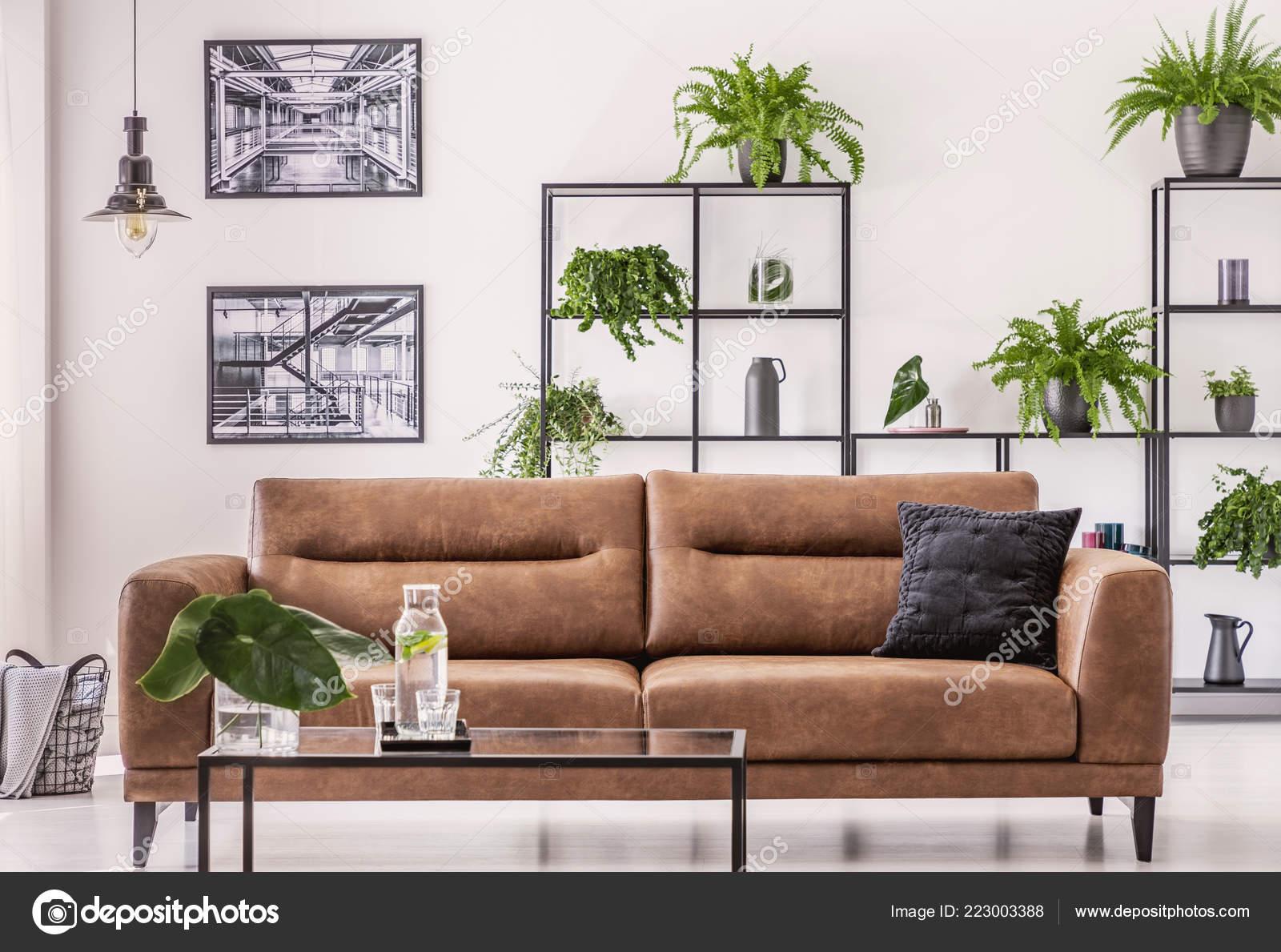 Canapé Cuir Marron Milieu élégant Salon Avec Concept Jungle Urbaine