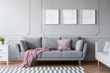 Dog's posters above comfortable grey couch in stylish living room interior with two sofas