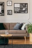 Černobílé fotografie na šedou stěnu interiéru stylový obývací pokoj s hnědý gauč s polštáři