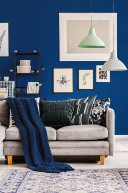 Cozy dark blue blanket and emerald pillows on grey couch in scandinavian living room interior with lamps and posters