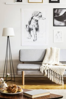 Posters above grey sofa with blanket next to lamp in simple living room interior. Real photo