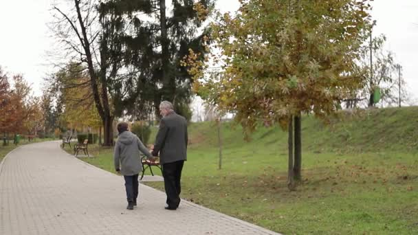 Grandpa and his grandson spend time together in the park. They are Walking in the park and rejoicing