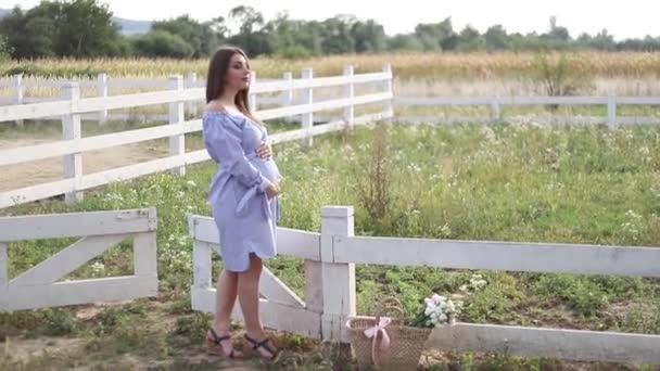 Szép terhes nő a kék ruha járás hallani a gazdaság. Kötött táska csokor virágot. Háttér, a fa és a hegyekre. Lassú mozgás