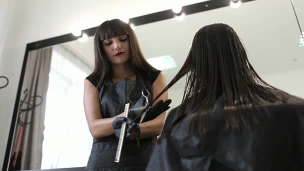 The hairdresser makes a hairstyle for a woman. Haircut close-up. Scissors and comb at the stylist. Beautiful hair of a young woman