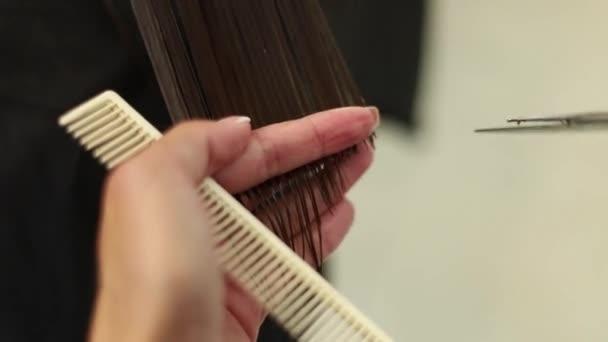 Kadeřník dělá účes pro ženu. Stříhání vlasů detail. Nůžky a hřeben na stylista. Krásné vlasy mladá dáma