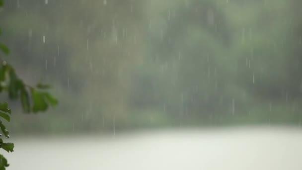 Zpomalené video deště padá. Podzimní počasí
